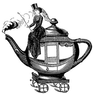 Teapotcoach new face