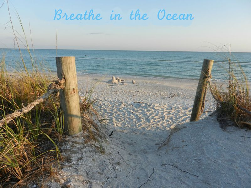 Breathe in the Ocean 3