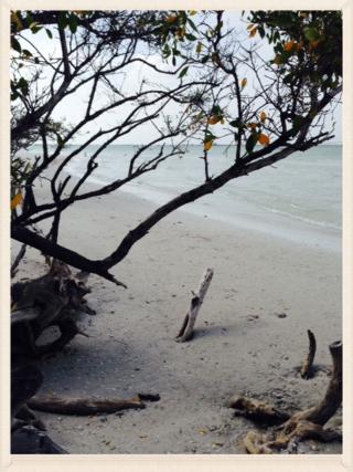 Scenic Lighthouse Beach