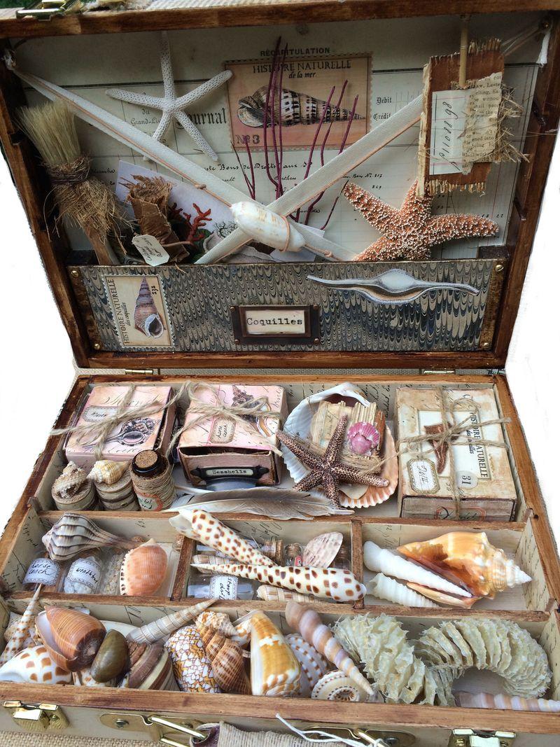 Collection box interior
