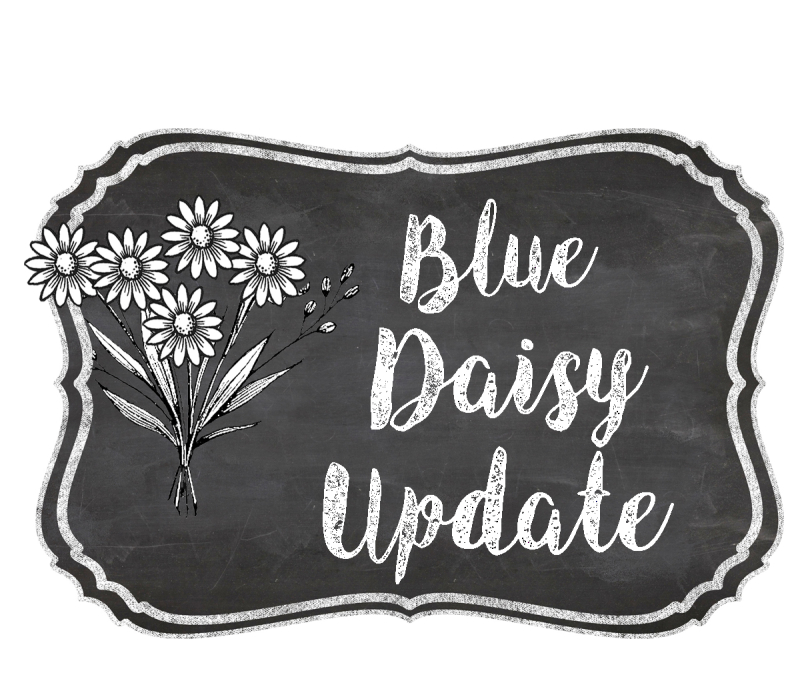 The Blue Daisy Update